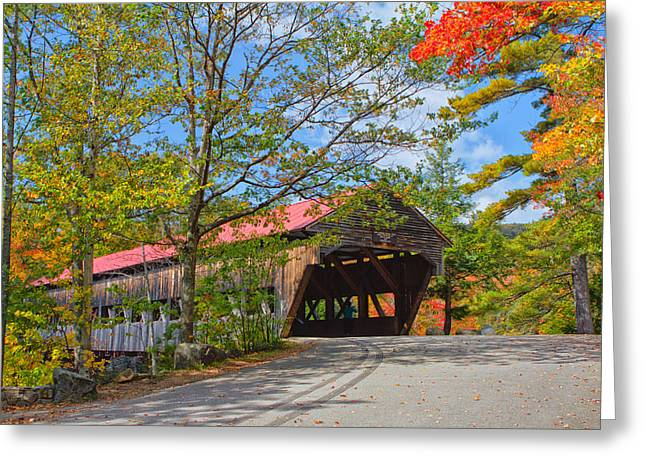 Drive In To Albany Covered Bridge #49 Greeting Card by Shell Ette