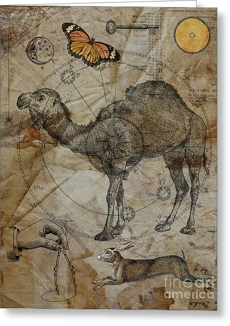 Dromedary Greeting Card by Judy Wood