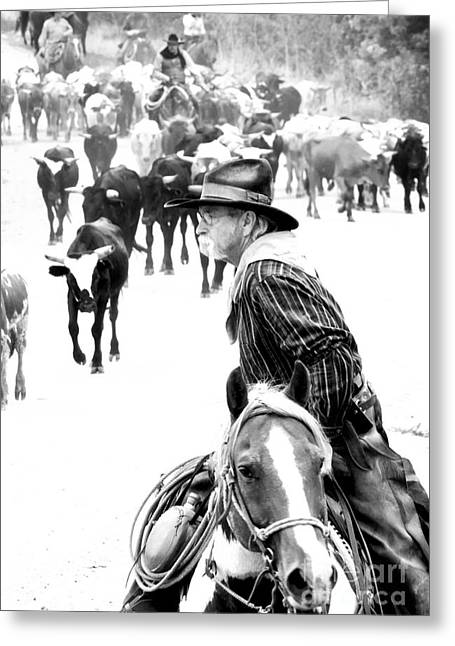 Drover At Work Greeting Card