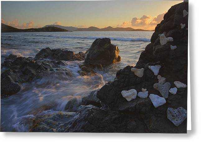 Drunk Bay Morning Greeting Card by Stephen  Vecchiotti