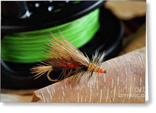 Dry Fly - D003399b Greeting Card by Daniel Dempster