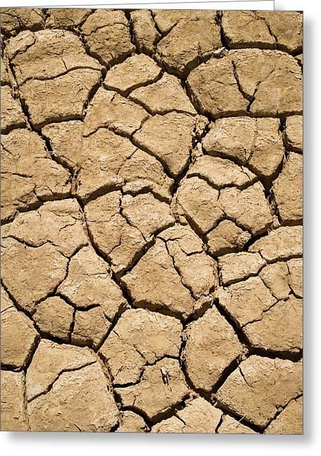 Dry Irrigation Pond, Strzelecki Track Greeting Card
