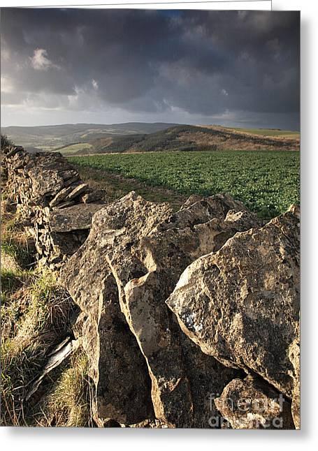 Dry Stone Wall View Greeting Card by Deborah Benbrook