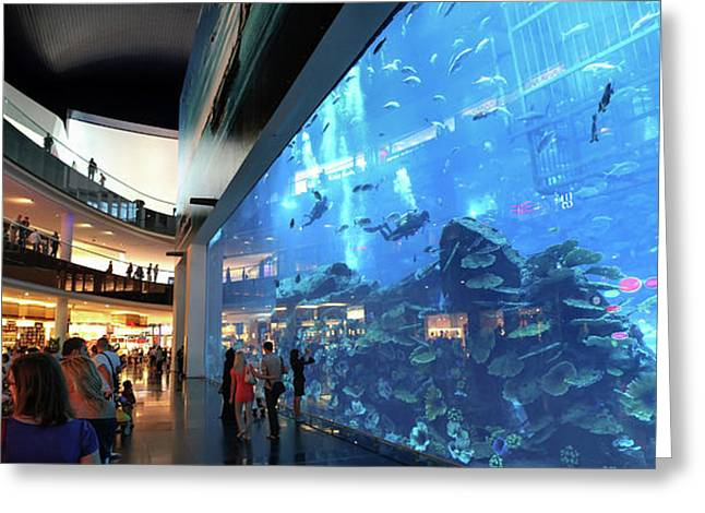 Dubai Aquarium Greeting Card by Babak Tafreshi