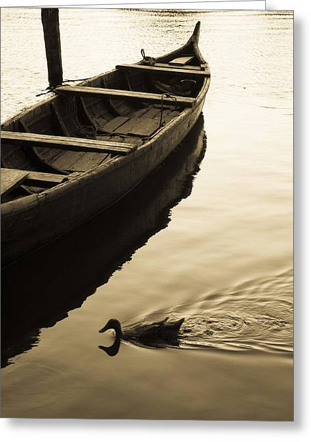 Duck And Boat Greeting Card by Sonny Marcyan