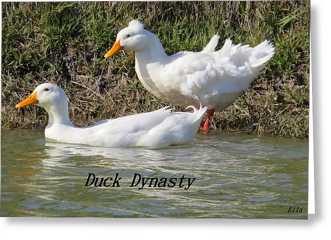 Greeting Card featuring the photograph Duck Dynasty by Ella Kaye Dickey