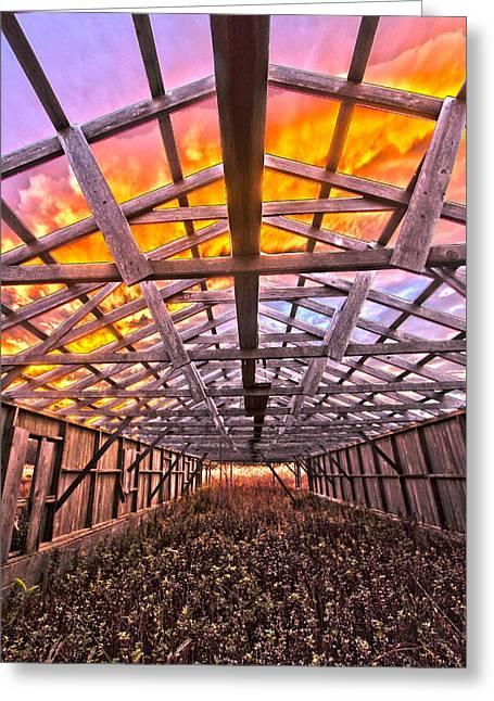 Duck Farm Skeleton Skylight Greeting Card