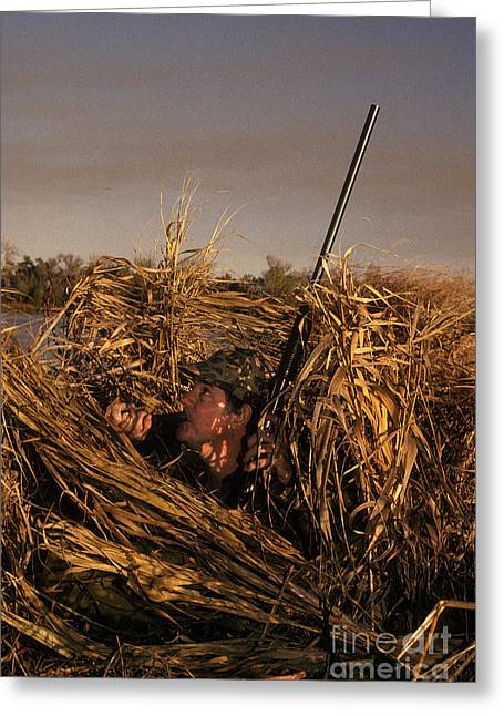 Duck Hunter In Blind Greeting Card