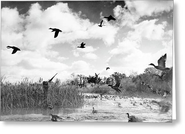 Duck Hunter Taking Aim Greeting Card by Underwood Archives