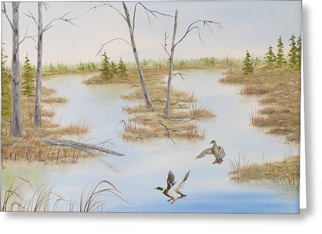 Duck Marsh Greeting Card by Janet Hufnagle