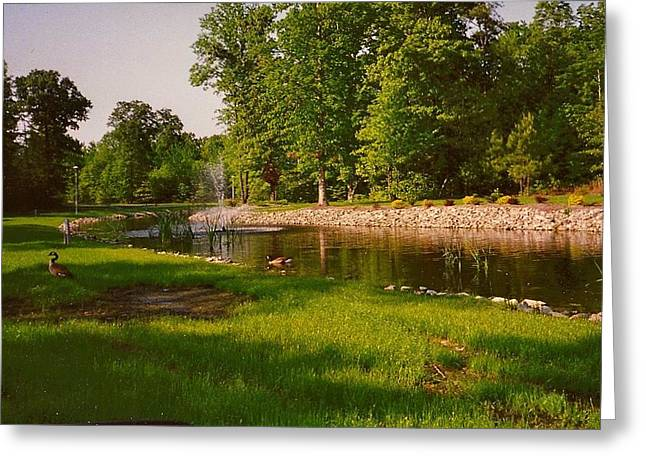 Greeting Card featuring the photograph Duck Pond With Water Fountain by Amazing Photographs AKA Christian Wilson