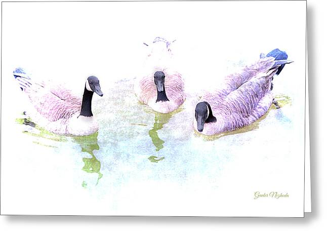 Greeting Card featuring the photograph Ducks by Gunter Nezhoda