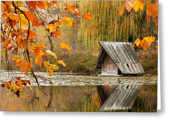 Duck's House Greeting Card by Evgeni Dinev