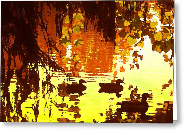 Ducks On Red Lake Greeting Card by Amy Vangsgard