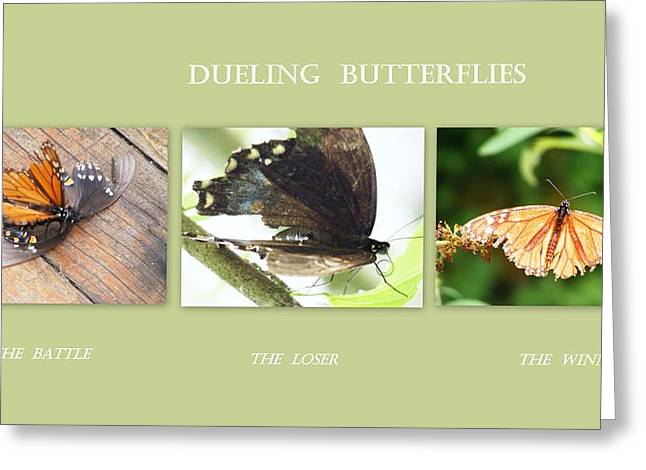 Greeting Card featuring the photograph Dueling Butterflies Collage by Margie Avellino