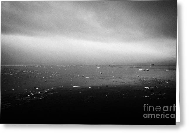 dull overcast misty day in Fournier Bay on Anvers Island Antarctica Greeting Card by Joe Fox