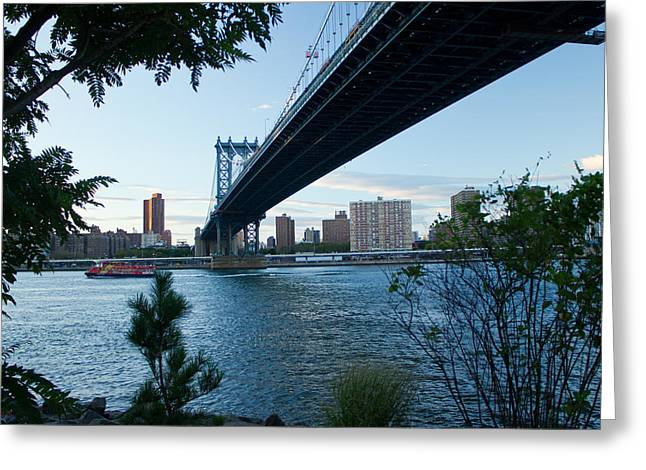 Greeting Card featuring the photograph Dumbo One by Jose Oquendo