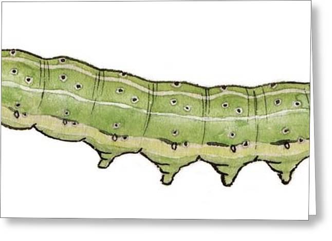 Dun Bar Caterpillar Greeting Card by Mikkel Juul Jensen