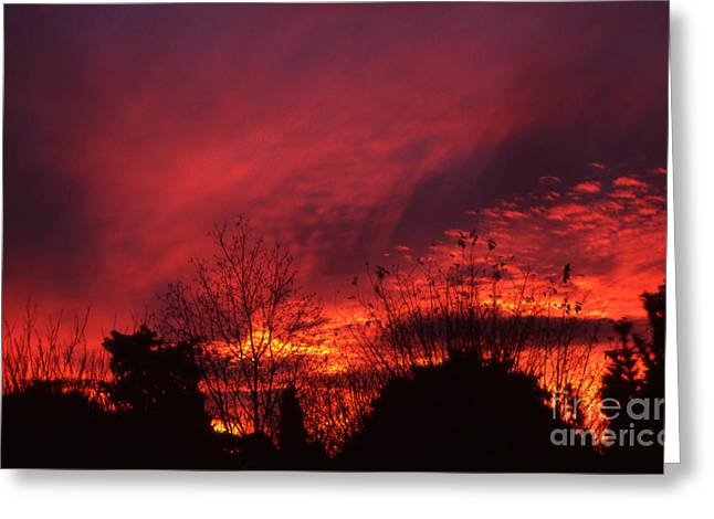 Greeting Card featuring the photograph Dundee Sunset by Jeremy Hayden