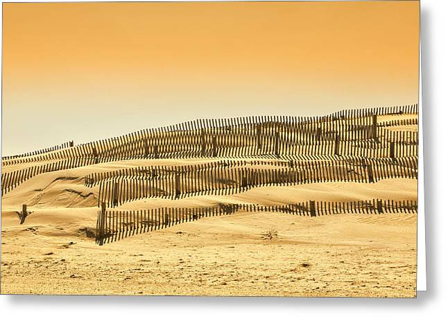 Dune Fence Greeting Card by Jay Wickens