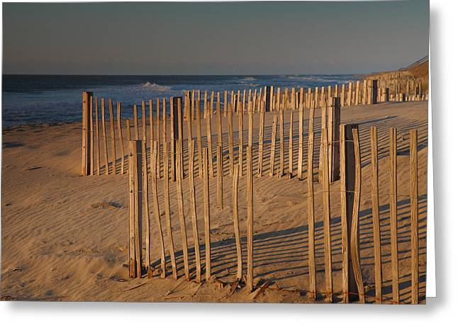 Dune Fences At First Light I Greeting Card by Steven Ainsworth