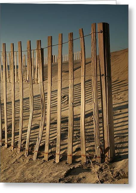 Dune Fences Early Morning II Greeting Card by Steven Ainsworth