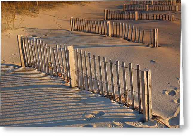 Dune Fences Early Morning Greeting Card by Steven Ainsworth