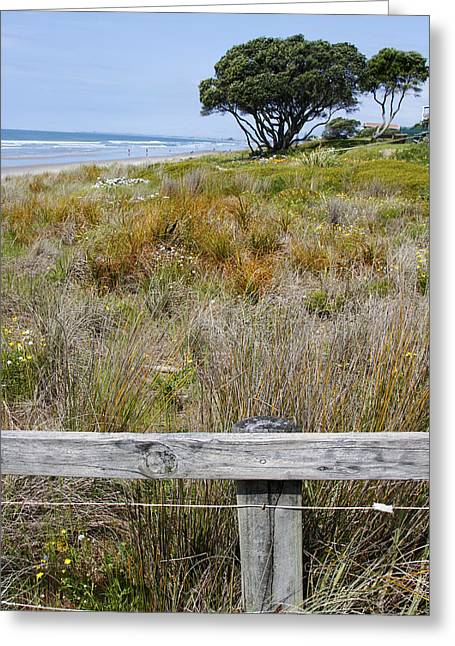 Dune Grass Greeting Card by Les Cunliffe