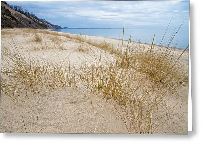 Greeting Card featuring the photograph Dune Grass On Lake Michigan by Mary Lee Dereske