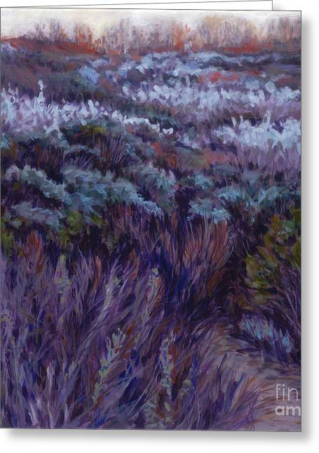 Dune Lupine Greeting Card