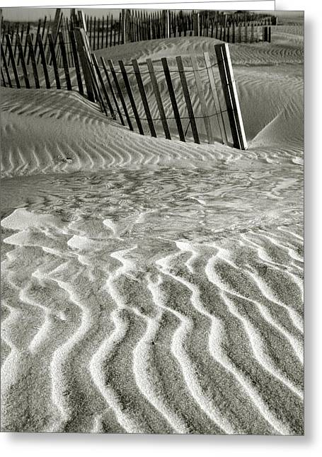 Dune Patterns II Greeting Card by Steven Ainsworth