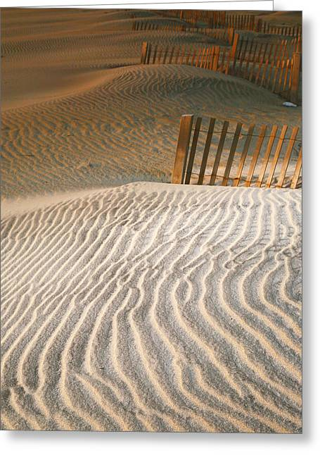 Dune Patterns IIi Greeting Card by Steven Ainsworth