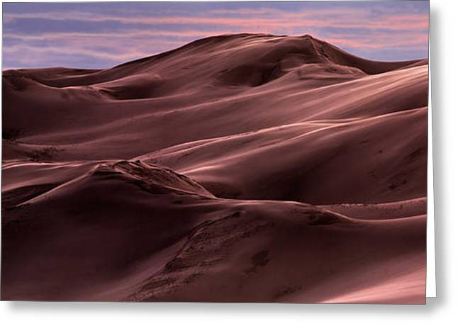 Dune Texture And Light Greeting Card by Leland D Howard