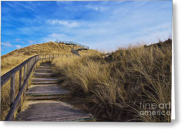 Dune With A View Greeting Card