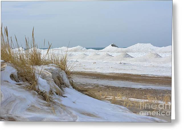 Dunes And Shelf Ice Greeting Card