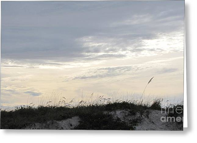 Dunes At Dusk II Greeting Card by Gayle Melges
