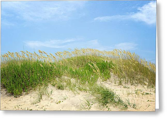 Dunes In Rodanthe Greeting Card