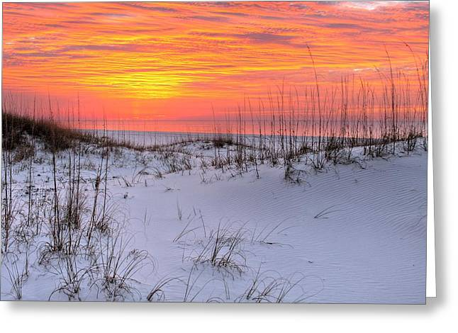 Dunes Of Orange Beach Greeting Card by JC Findley