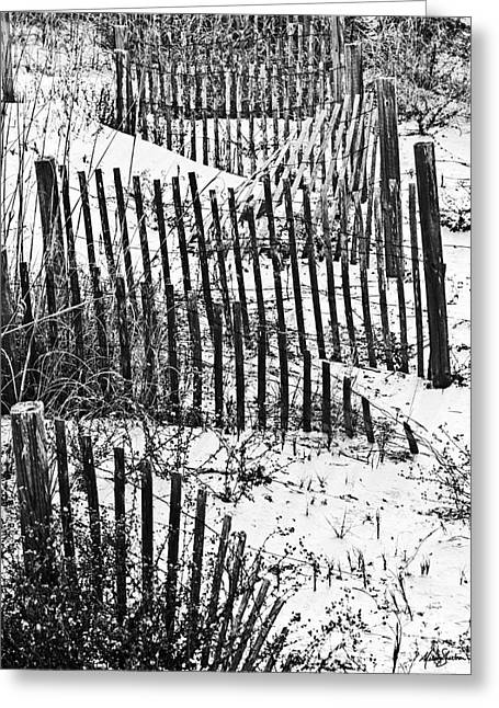 Dunes Of Tybee Island Greeting Card