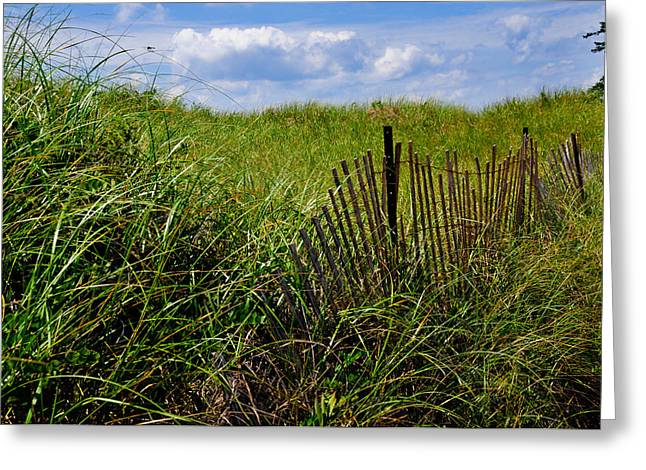 Dunes On Prince Edward Island Greeting Card