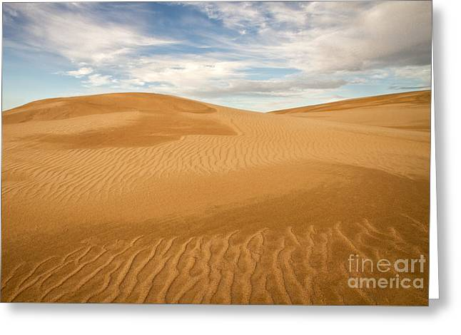 Dunescape Greeting Card