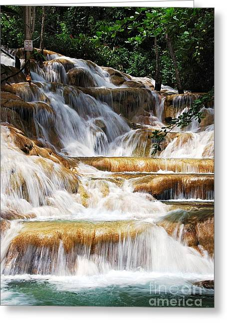 Dunn Falls Greeting Card by Hannes Cmarits