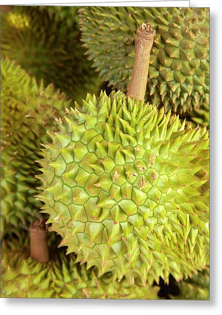 Durians, Can Duoc Market, Long An Greeting Card