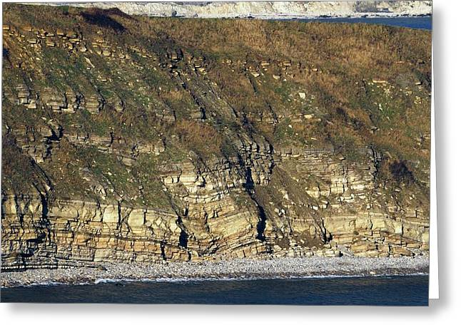 Durlston Cliff Greeting Card by Colin Varndell