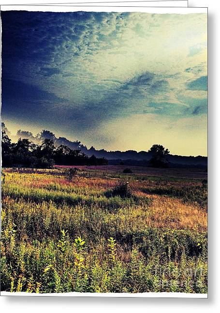 Dusk In The Pasture Greeting Card by Garren Zanker