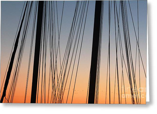 Dusky Ropes Greeting Card