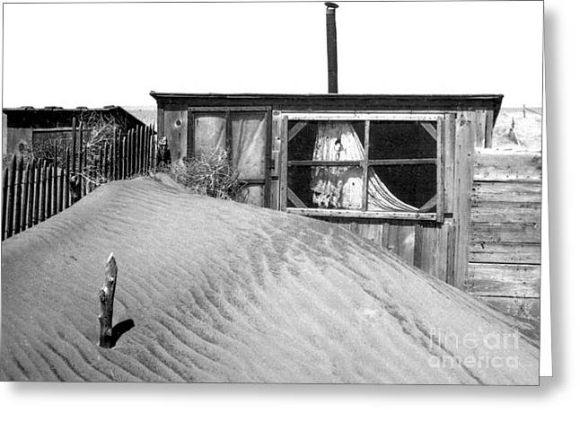 Dust Bowl, Cimarron County, 1937 Greeting Card