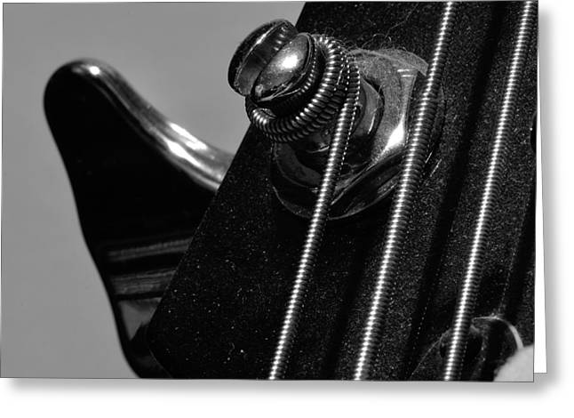 Dusty Bass Greeting Card by Todd Soderstrom