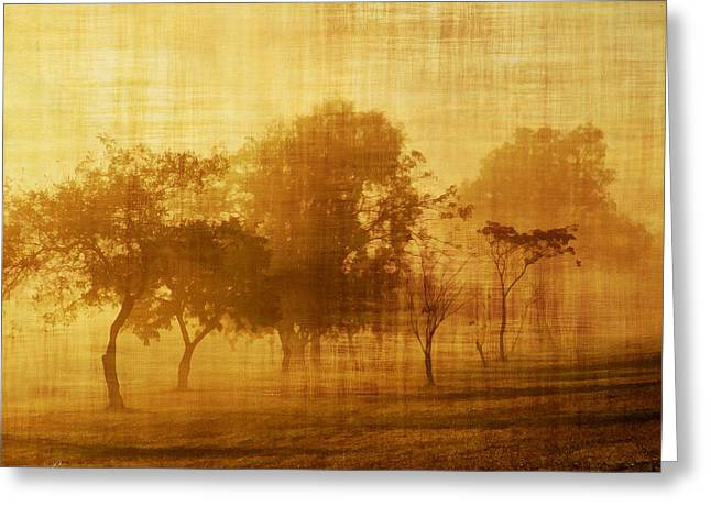Dusty Mornings In The Sun Vintage Greeting Card by Georgiana Romanovna