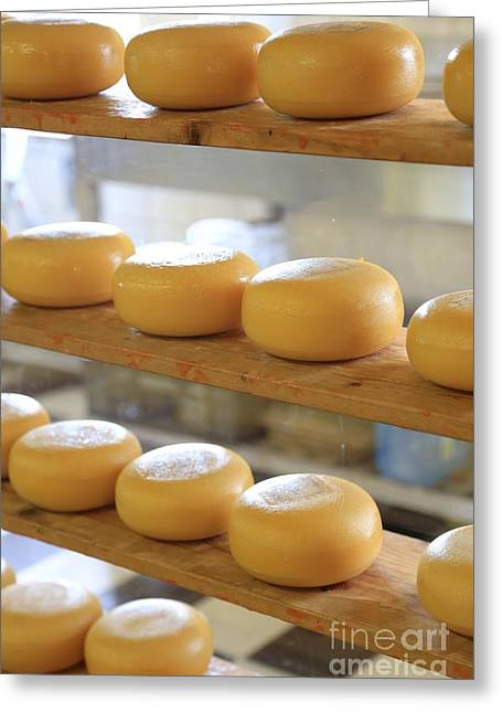 Dutch Cheese Greeting Card by Carol Groenen